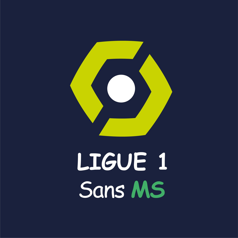 La Ligue 1 sans MS